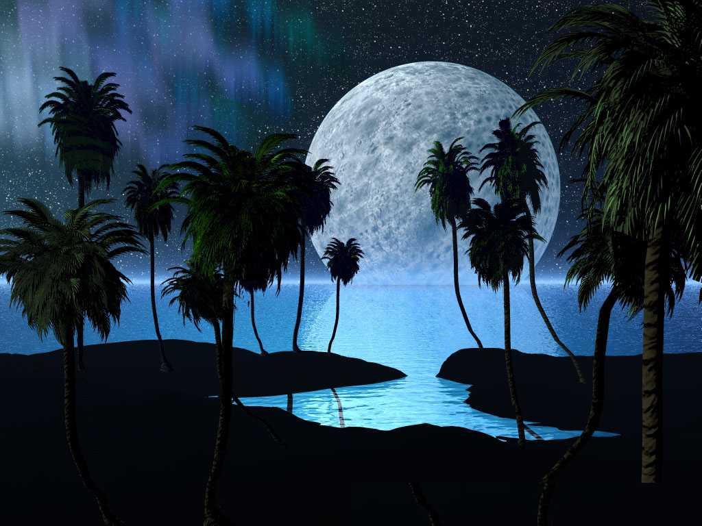 http://www.moonmentum.com/blog/wp-content/uploads/2010/11/Luna.jpg