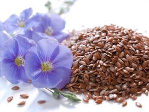 payloom_image-flax-seed-linaza