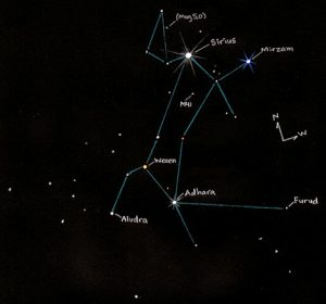 CanisMajor