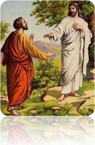 Jesus Cociando 02 197x300 Haz como la Higuera y florece cargado de historia.