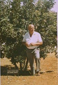 Oskar Schindler y su arbol de hombre justo