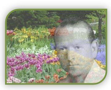flores-de-bach-dr-edward-bach1