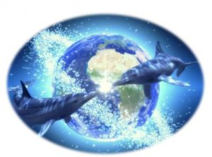 delfines,_mundo11