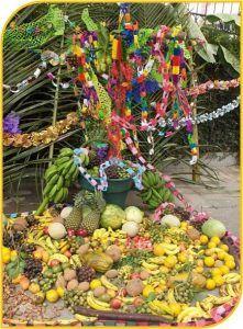 celebracion_cruz_de_mayo