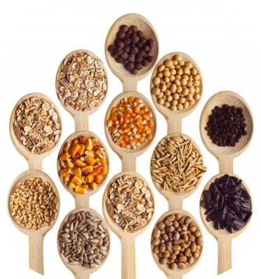 distintos  tipos de granos