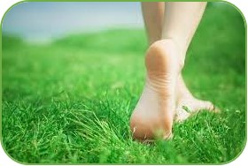 Con los pies sobre la tierra