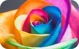 flor de colores- avant garde